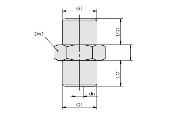 SW 100 G1/4-AG